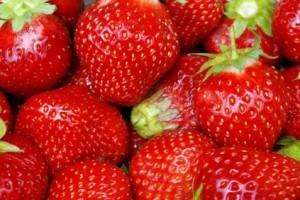 erdbeerenTimbos